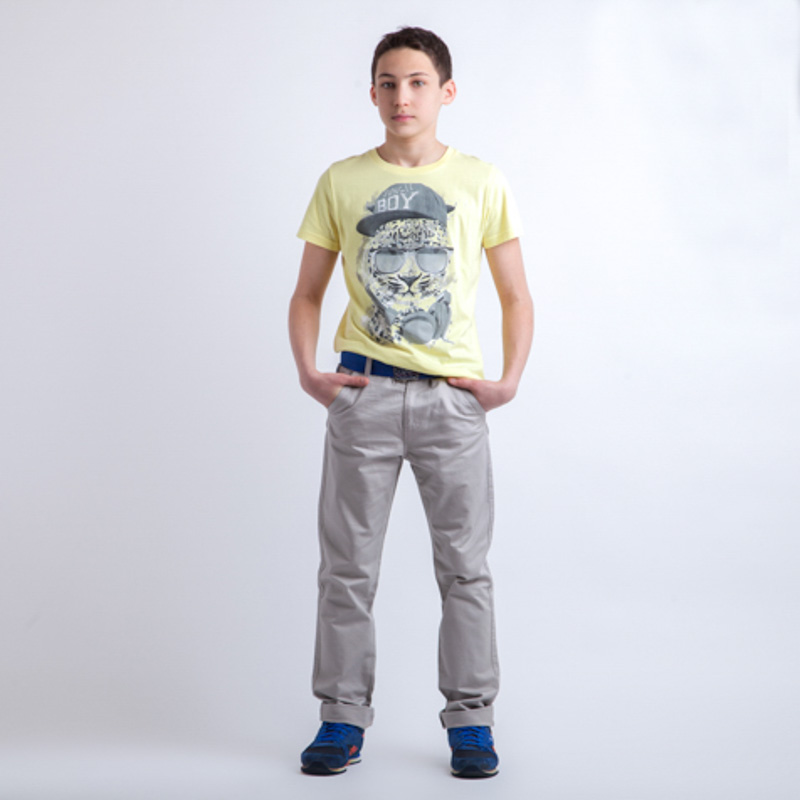 Фуфайка трикотажная для мальчиков (футболка) 253021