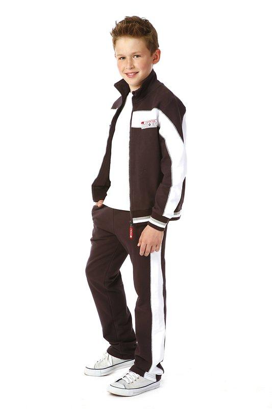 Комплект: брюки, толстовка 323044