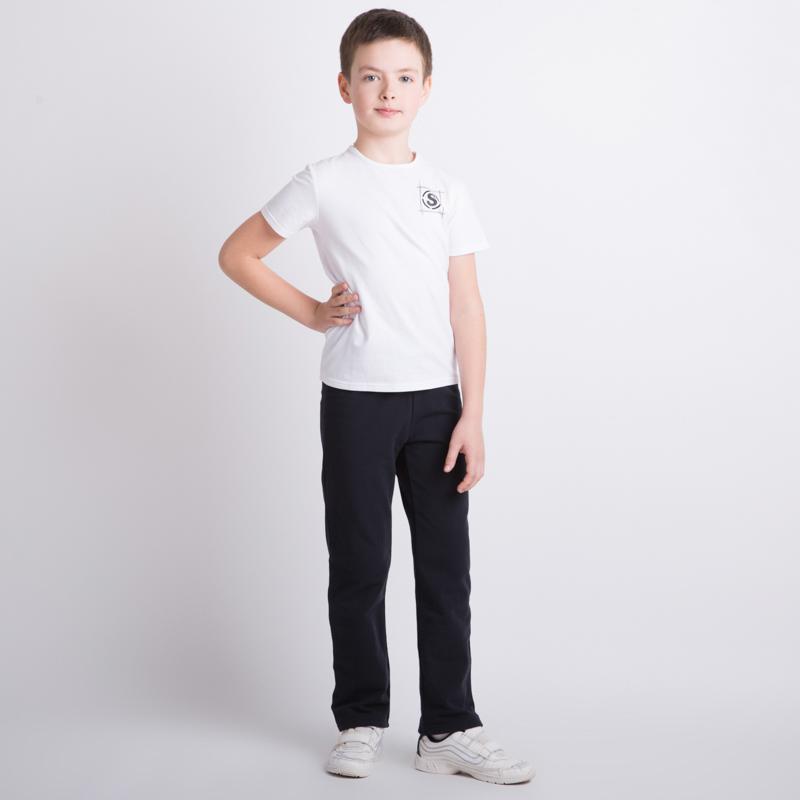 Комплект трикотажный для мальчиков: фуфайка (футболка), брюки 353028